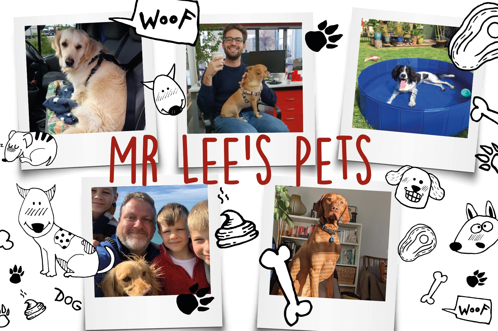 Mr Lee's Team with their dogs