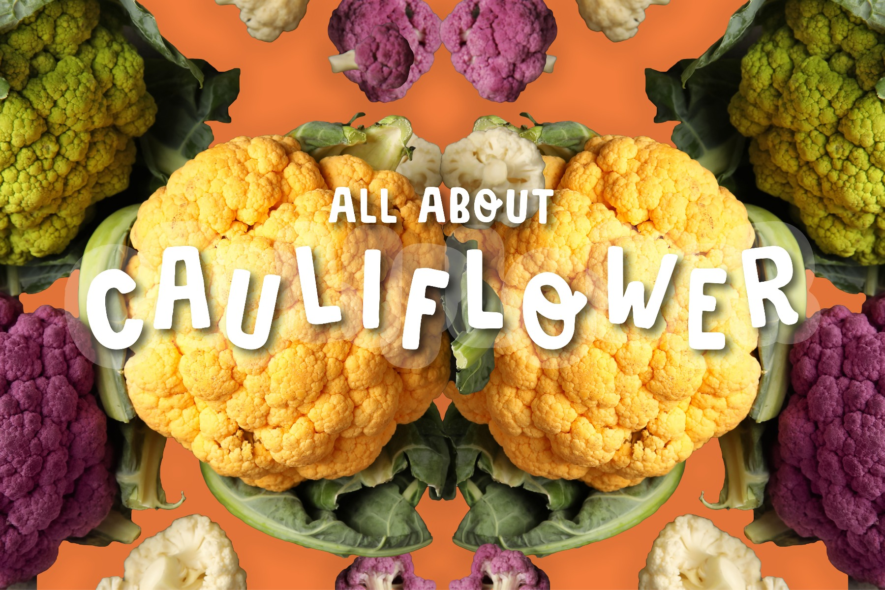 Cauliflower heads in different colours, yellow, green and purple